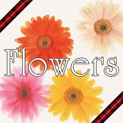 Flowers ワンコーラスバージョン