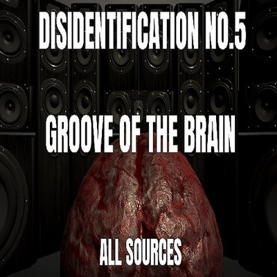 Disidentification_No.5_Groove of the brain_Sample(アップデート後)