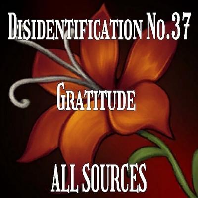 Disidentification_No.37_Gratitude_Sample_Sample